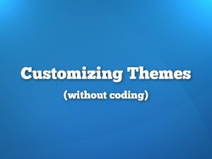 WordPress Theme Customizer