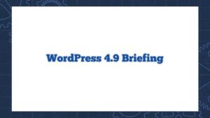 WordPress 4.9 Briefing
